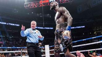 The Art of Refereeing and Scoring Fights: The Essentials