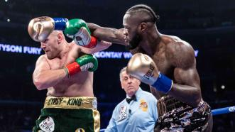 Wilder-Fury 2: Through Their Trainers' Eyes